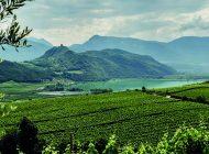 Italienische Weinregionen